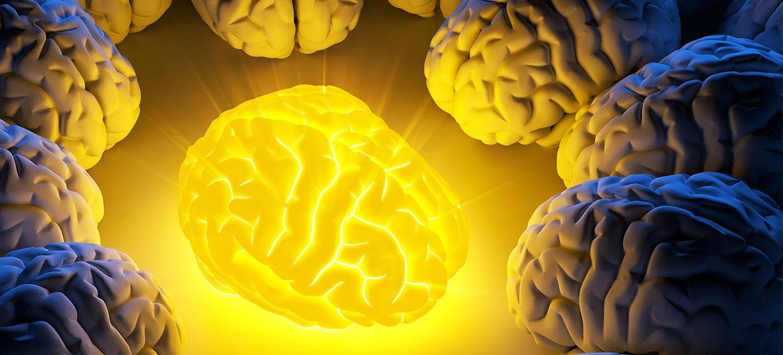 Brainpower Cov